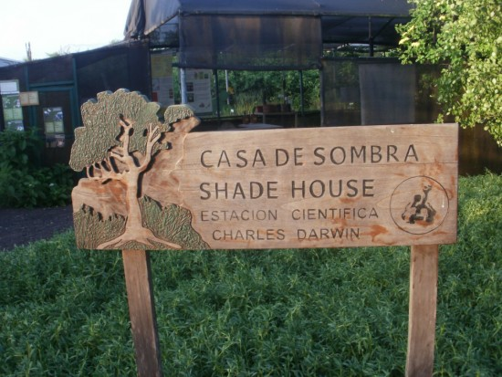 Charles Darwin Research Center in Galapagos Islands. Casa de Sombra - Shade House Next to Charles Darwin Research Center